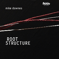 Mike Downes - Root Structure