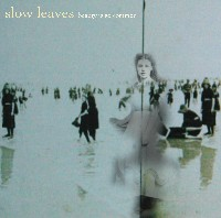 Slow Leaves - Beauty Is So Common