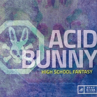 Acid Bunny - High School Fantasy