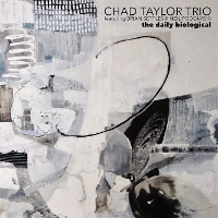 Chad Taylor Trio - The Daily Biological