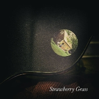 David R. Elliott - Strawberry Grass