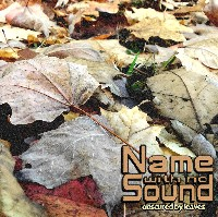 Name With No Sound - Obscured By Leaves