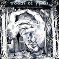 The Woods Of Ypres - Woods 5: Grey Skies & Electric Lights